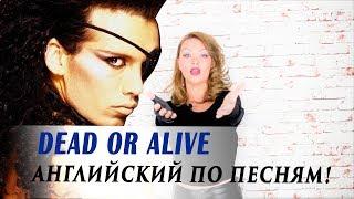 Английский по песням. Dead or Alive: YOU SPIN ME ROUND
