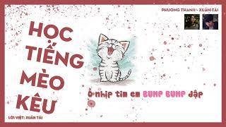 HỌC TIẾNG MÈO KÊU ( lời việt ) 学猫叫 TikTok   Xuân Tài x Phương Thanh