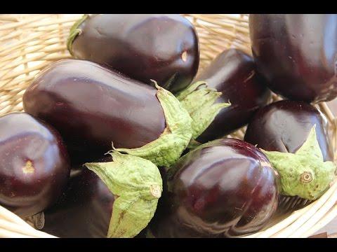 Varieties Of Brinjal (बैंगन की किस्में) In Baatein Kheti Ki - On Green TV