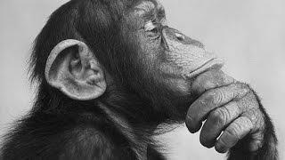 (749) ЧТО ВЫБРОСИТЬ, ЧТО ОСТАВИТЬ, КОГО СЛУШАТЬ И ЧТО ДЕЛАТЬ?? БЫТЬ ИЛИ НЕ БЫТЬ?? Natalya Quick(Самое смешное видео моего канала!!! Не пожалеете))) https://www.youtube.com/watch?v=N9K69Xie_kY Как избавиться от мешков под глаз..., 2016-06-28T09:30:01.000Z)