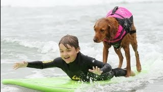 Surf dog Ricochet on ESPN