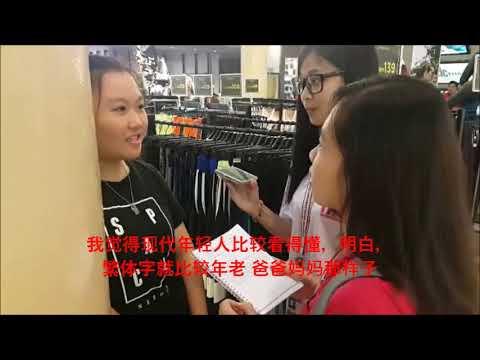 马来西亚华人对于繁体字和简体字的使用与看法  BBC3223 2017/18