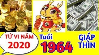 Tử vi năm 2020 tuổi GIÁP THÌN - 1964 VỀ SỰ NGHIỆP, VẬN HẠN, SAO CHIẾU MỆNH BẠN NÊN BIẾT