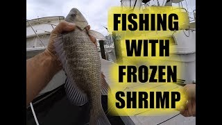 Live or Frozen Shrimp For Sheepshead and Mangrove Snapper?