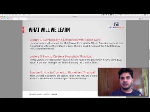 Lecture 1: Overview - MultiChain: How to Setup Private Blockchain using AWS EC2