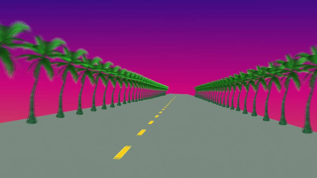 Palm Tree Sunset Youtube