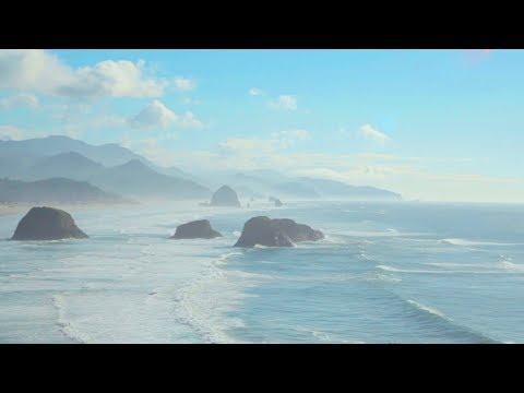 Meeresrauschen mit Möwen – Wellenrauschen am Meer zum Einschlafen
