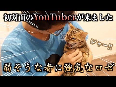 YouTuberとルトとロゼ( ・∇・)