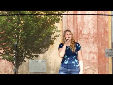 Píseň samotářky - Lucie Benešová