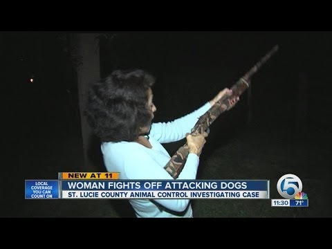 ATTACKED: Woman Fights Off Pit Bull Dogs With Shotgun