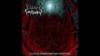 Flesh Consumed - Ecliptic Dimensions of Suffering (2010) Full Album