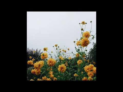 Upbeat K-Pop Instrumental Playlist 1