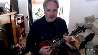 The Yellow Wattle (jig) on mandolin