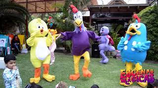 show musical de la gallina pintadita   Escenas Mágicas eventos y espectáculos infantiles