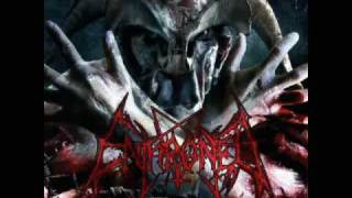 "enthroned - ""a.m.s.g."""