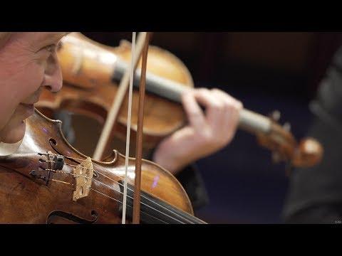 Schoenberg : Nocturne pour violon et cordes - J.P. Wallez, ORCW - LIVE 4K