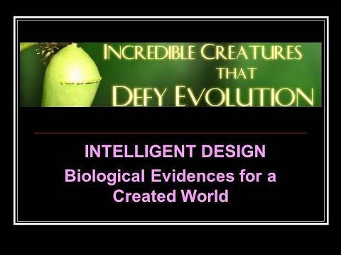 Animals that Defy Evolution – Intelligent Design