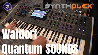 Synthplex 2019 Waldorf Quantum Sounds Only