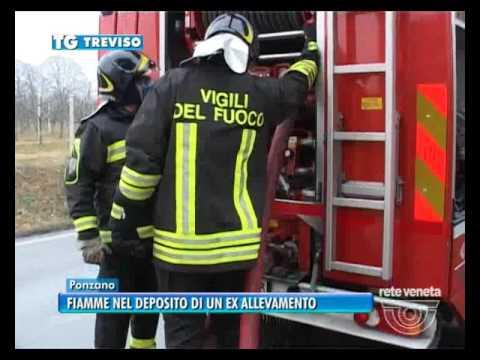 TG TREVISO (30/01/2017) - FIAMME NEL...