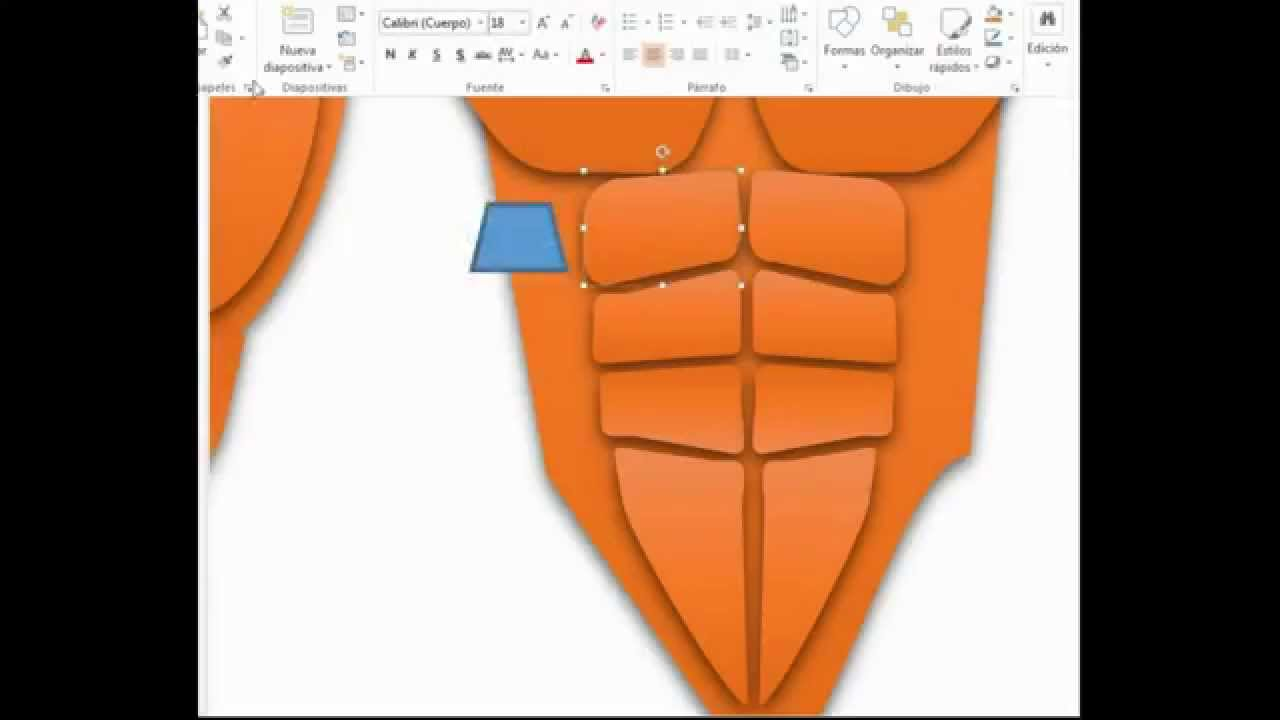 Musculos del Cuerpo Humano en Power Point - YouTube
