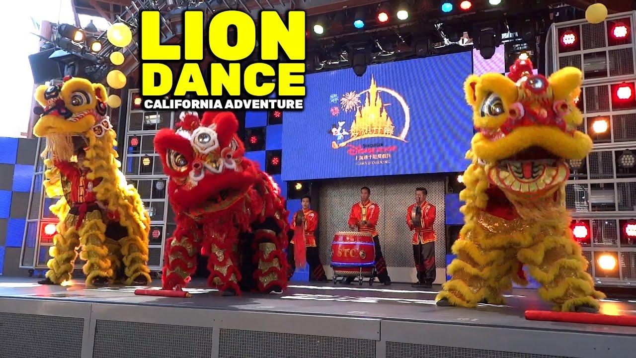 Full Chinese Lion Dance In Celebration Of Shanghai
