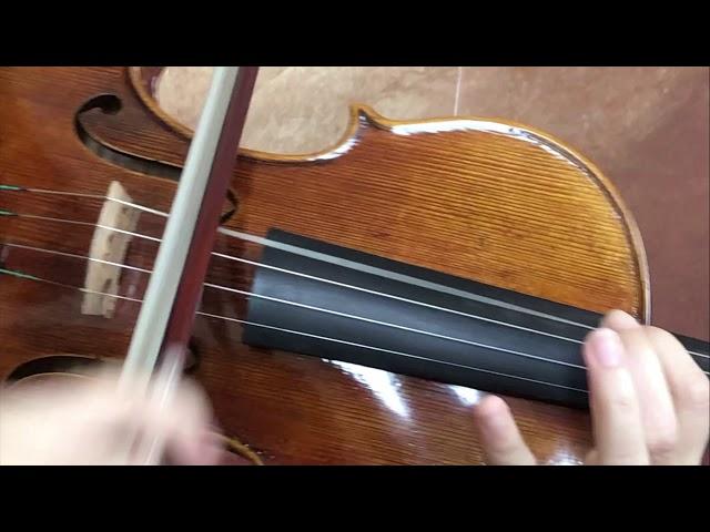 Ifstrings Master Build Deluxe Wood #359 Guarneri del Gesu 1730