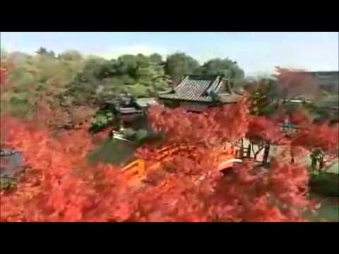 Asia pacific countries.wmv