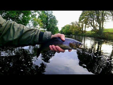 Fly Fishing - September - Ireland