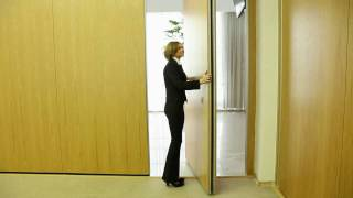 видео Перегородки и межкомнатные двери с витражами