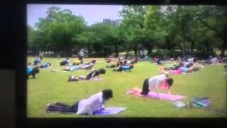 NHKニュースに日本活育協会主催の第5回野外ヨガが紹介されました。