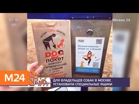 Смотреть фото Для владельцев собак в Москве установили специальные ящики - Москва 24 новости россия москва