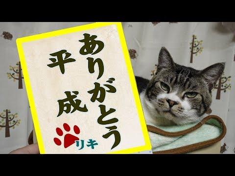 ありがとう平成☆平成が生んだ甘えん坊&食いしん坊モンスターRIKI☆【リキちゃんねる 猫動画】Cat video キジトラ猫との暮らし
