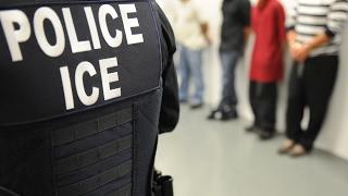 5 Derechos de inmigrantes indocumentados en Estados Unidos