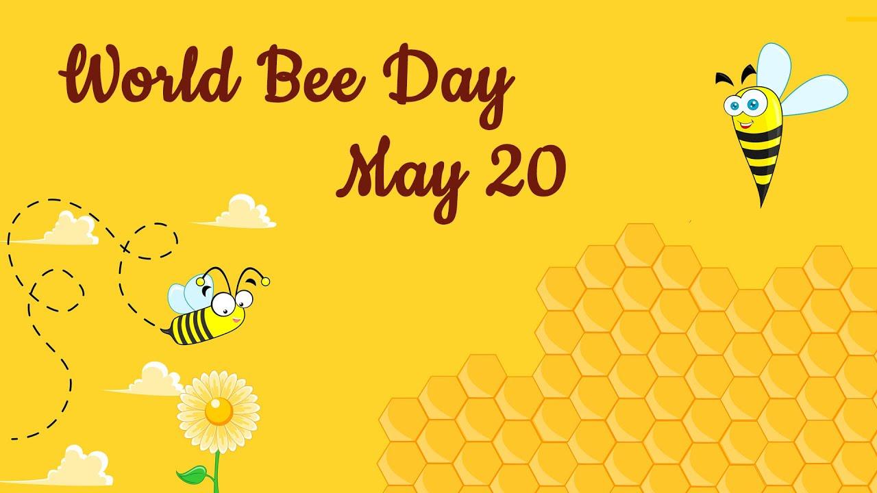 World Bee Day 20 May 2021