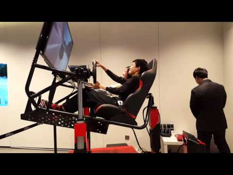 Driving simulator 2016