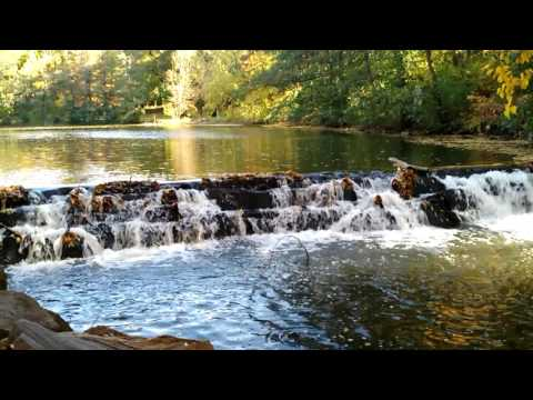 Bronx River Reservation - The Falls