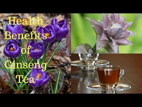 16 Amazing Health Benefits of Ginseng Tea