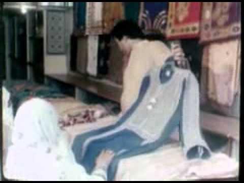 SUNEHRI SERZAMEEN-I-PAKISTAN (DVD Format, duration 19-minutes in Urdu Part-2)