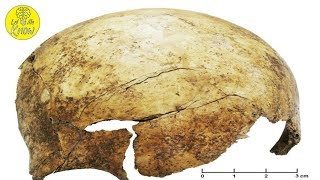 A 7000 Year Old Mass Grave Discovered In Germany Reveals A Dark Truth About Ancient Farmers