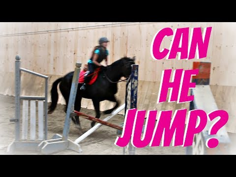 CAN HER HORSE JUMP? Day 108 (04/18/18)