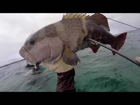 SPEARFISHING GUAM - HOUSE PARTY