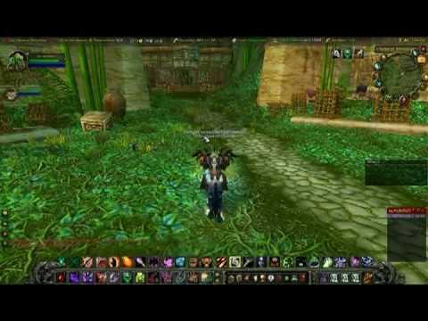 Warlock Soloing ZG For mounts and Turtle Polymorph (Thekal, Mandokir, Gahz'Ranka)