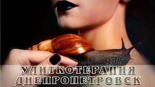 """Улиткотерапия: видео в Днепропетровске (салон """"Зебра"""", отзывы)"""