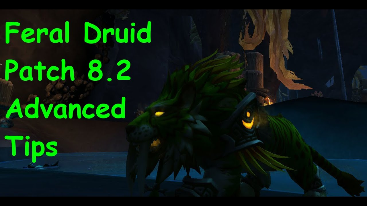 FERAL DRUID BFA PATCH 8 2 FULL GUIDE EVERYTHING YOU NEED TO KNOW