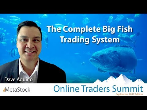 The Complete Big Fish Trading System