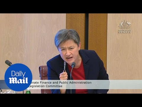 Mathias Cormann and Penny Wong have fiery exchange over Hanson - Daily Mail