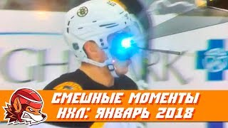 Самые курьёзные и смешные моменты НХЛ: январь 2018