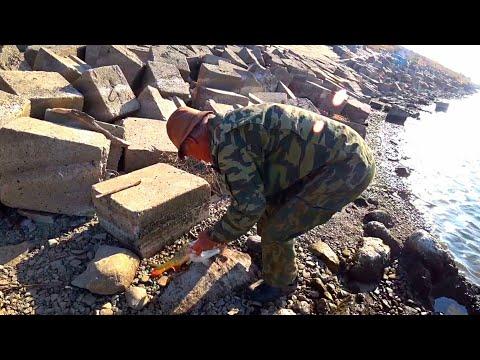 ЗАБРАЛИ РЫБУ И СЛОМАЛИ УДОЧКУ  рыбалка осенью 2020