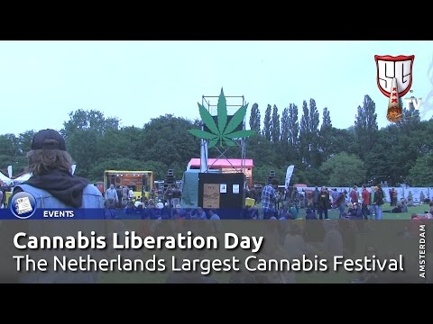 Cannabis Liberation Day - The Netherlands Largest Cannabis Festival   Smokers Guide TV Amsterdam