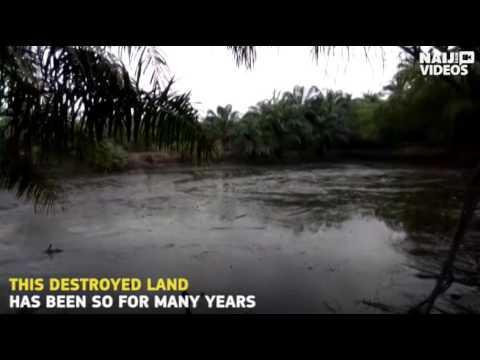 How oil pollution rendered Ogoni land uninhabitable